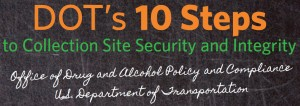Image of DOT's 10 Steps