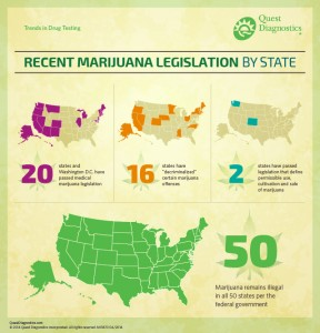 Marijuana Legalization InfoGraphic8.14
