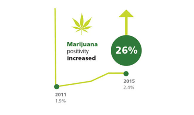 Marijuana positivity increased