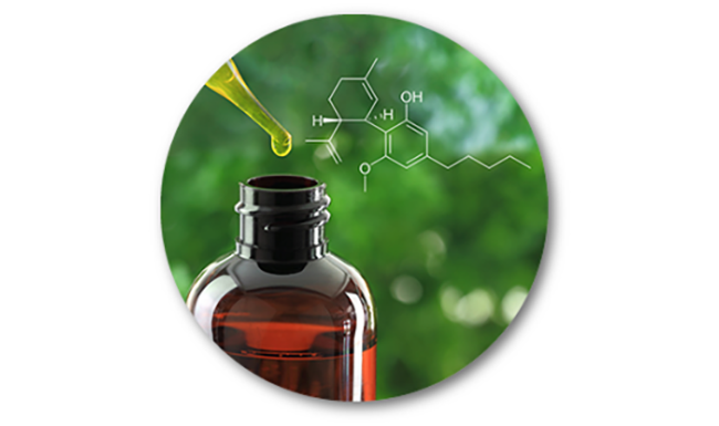 Cannabidiol or CBD found in cannabis