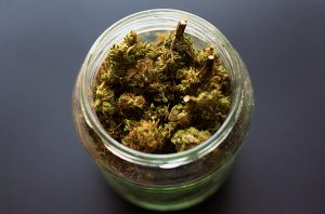 An open jar of marijuana